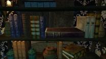 Разворот книг
