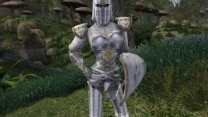 Рыцари Тамриэля ч.2 - Доспехи Дибеллы