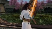 Огненный меч, Ледяной меч