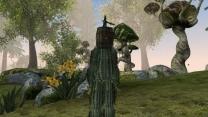 Человек-кактус