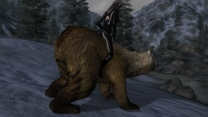 Ездовой медведь