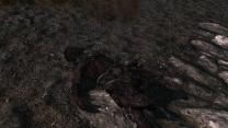 Эффекты обгоревших, замороженных и наэлектризованых трупов