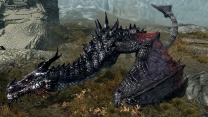 Deadly Dragons