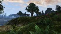 Morrowind [Fullrest Repack]
