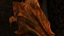 Скайримский щит Ауриэля