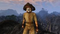 Три шлема из панциря грязекраба