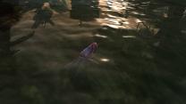 MRenewal - Мирная рыба и цефалоподы