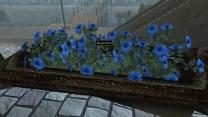 Обновленный Морровинд. Цветы