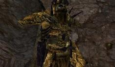Ashlandic Marauder Armor