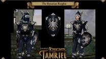 Рыцари Тамриэля - антология