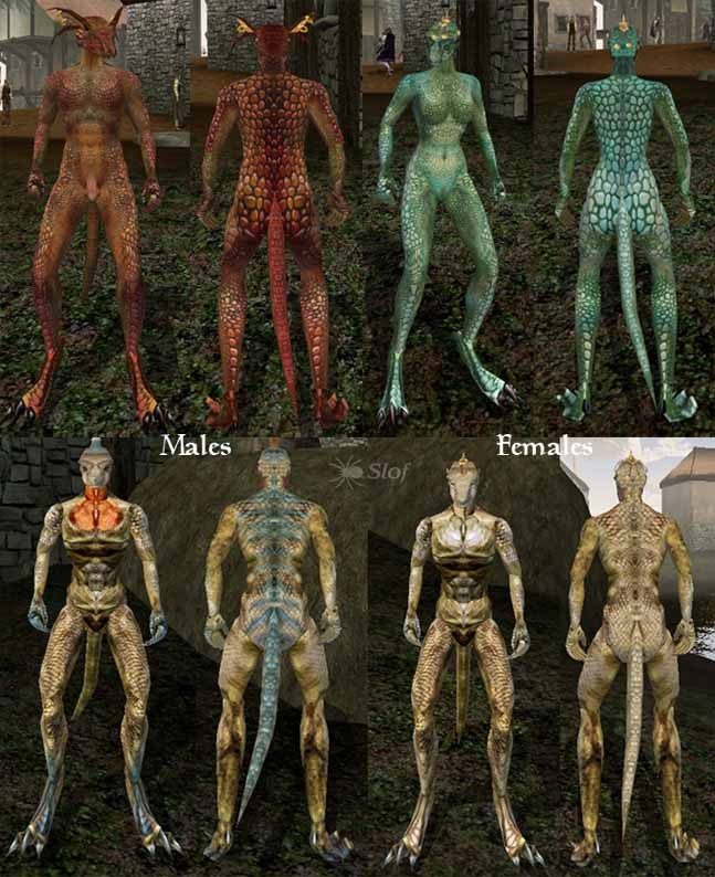 morrowind плагины голые тела-бя2