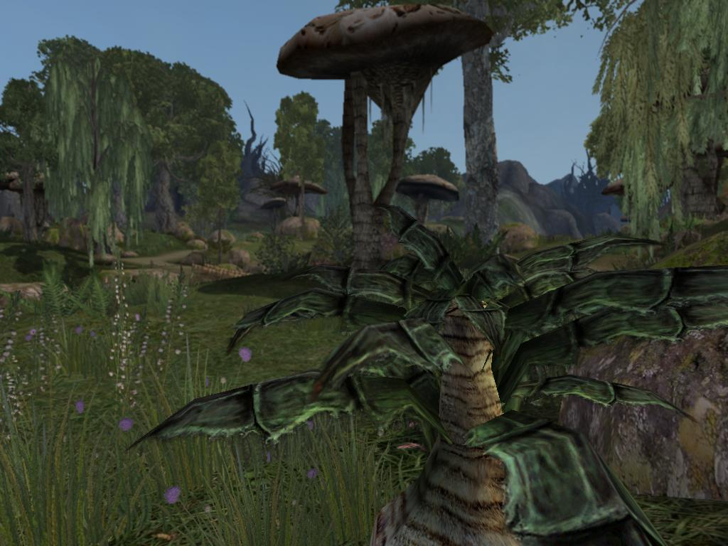 Morrowind graphics extender (mge)