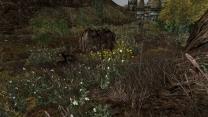 Исправленная трава Вурта 2.3a