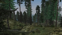 Morrowind Graphics Extender