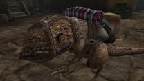 Вьючный гуар Кьяри