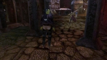 Новые NPC (от Starfire)