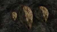 Три щита из панциря грязекраба