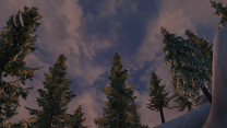 Великий лес Солтсхейма